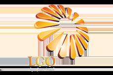 Официальный интернет партнёр ЛГО