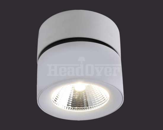 Точечный светильник Divinare 1295/03 PL-1 Urchin