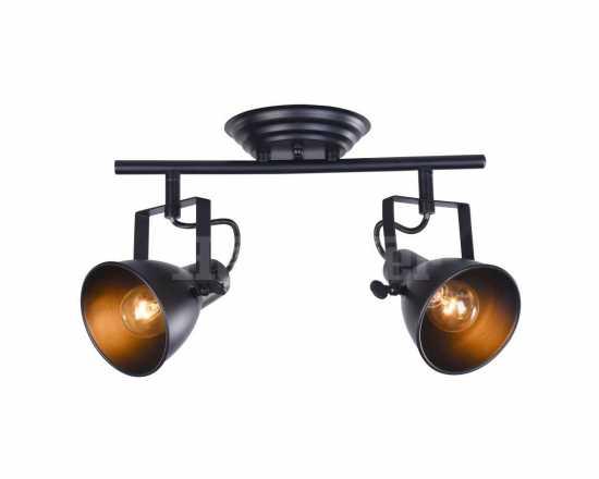 Настенно - потолочный светильник Freya FR4276-CW-02-B Ibbi
