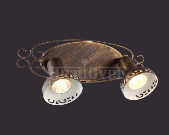 Спот Arte Lamp A5219AP-2BR Focus
